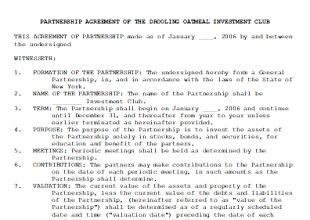 Partnership Agreement Template 15